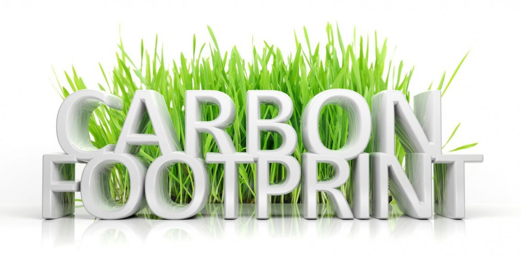 Reducing Our Carbon Footprint Essay - image 6