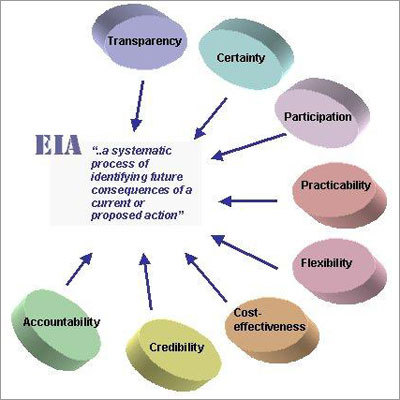 The Role of the EIA Consultant